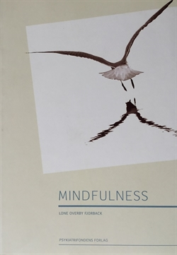 Mindfulness (m/ CD)
